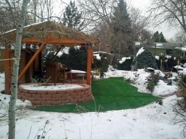 Artificial Grass Photos: Artificial Grass Carpet Beyerville, Arizona Lawns, Backyards