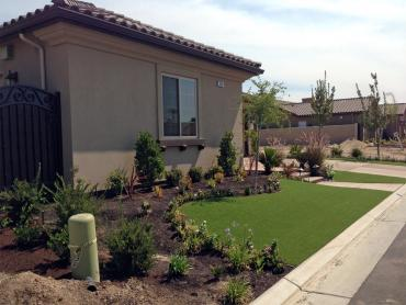 Artificial Grass Photos: Artificial Grass Carpet Gadsden, Arizona Landscaping Business, Front Yard Ideas