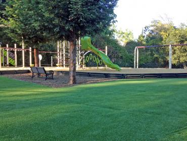 Artificial Grass Photos: Artificial Grass Installation Tucson, Arizona Landscaping, Recreational Areas