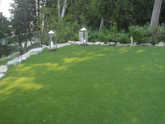 Artificial Grass Photos: Artificial Grass Pisinemo, Arizona Landscape Rock, Backyard Garden Ideas