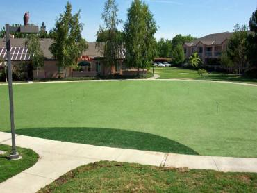 Artificial Grass Photos: Artificial Lawn Gila Crossing, Arizona Garden Ideas, Commercial Landscape