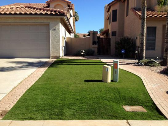 Artificial Grass Photos: Artificial Lawn San Carlos, Arizona Landscape Photos, Landscaping Ideas For Front Yard