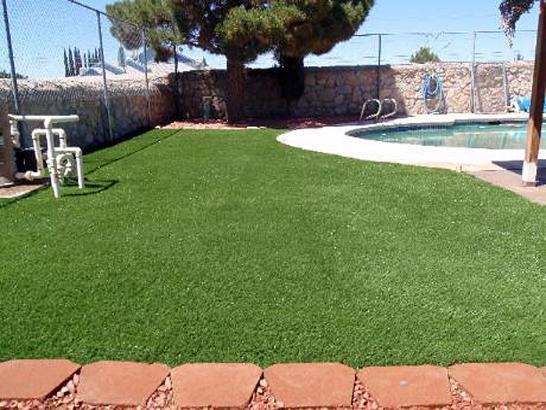Artificial Grass Photos: Artificial Turf Cost Kino Springs, Arizona Landscaping, Kids Swimming Pools