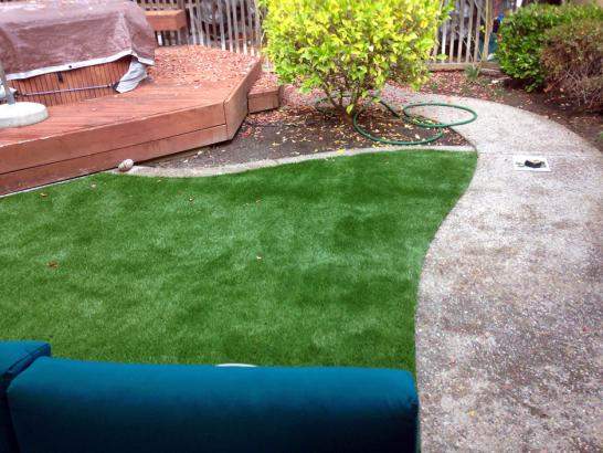 Artificial Grass Photos: Artificial Turf Installation Clifton, Arizona Landscape Photos, Backyard Landscaping