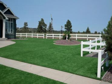 Artificial Grass Photos: Artificial Turf Installation Saint Johns, Arizona Lawn And Garden, Beautiful Backyards