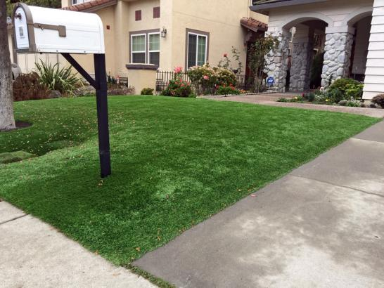 Artificial Grass Photos: Artificial Turf Installation Sierra Vista, Arizona Lawn And Landscape, Front Yard Ideas