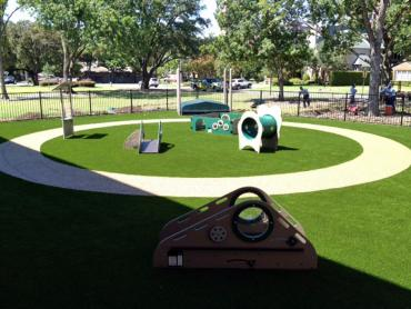 Artificial Grass Photos: Best Artificial Grass Cutter, Arizona Landscape Photos, Commercial Landscape