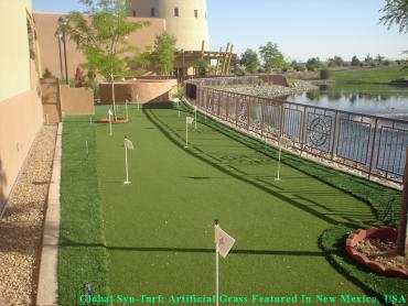 Best Artificial Grass Glendale, Arizona Roof Top, Backyard Makeover artificial grass