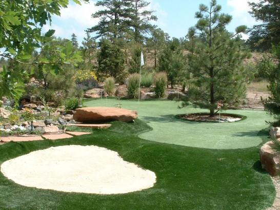 Artificial Grass Photos: Best Artificial Grass Globe, Arizona Garden Ideas, Backyard Designs