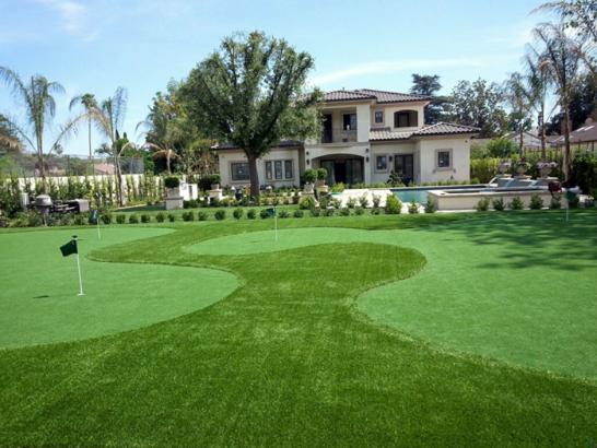 Artificial Grass Photos: Fake Grass Carpet Cibola, Arizona City Landscape, Front Yard