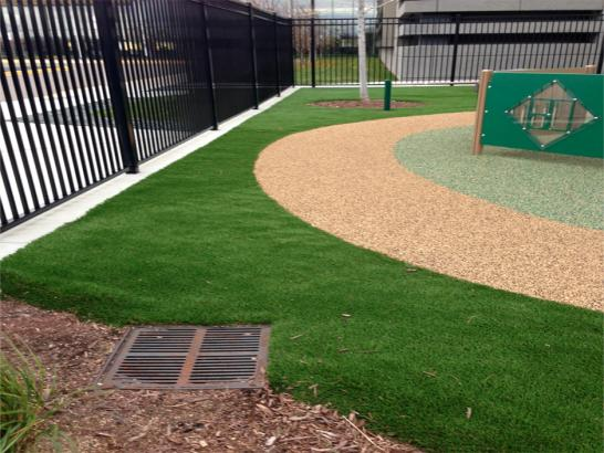 Artificial Grass Photos: Fake Grass Carpet Clay Springs, Arizona Landscape Design, Commercial Landscape