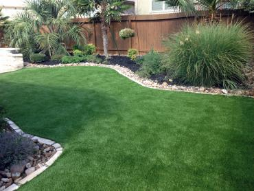 Artificial Grass Photos: Fake Grass Carpet Grand Canyon Village, Arizona Dog Hospital, Backyard