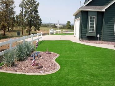 Fake Grass Carpet York, Arizona Landscape Design, Front Yard Ideas artificial grass