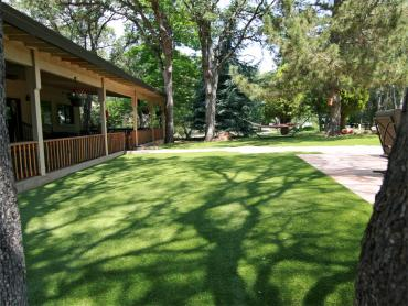 Artificial Grass Photos: Fake Grass Rio Rico, Arizona Landscaping, Backyards