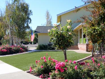 Artificial Grass Photos: Fake Lawn Aguila, Arizona Lawn And Garden, Landscaping Ideas For Front Yard