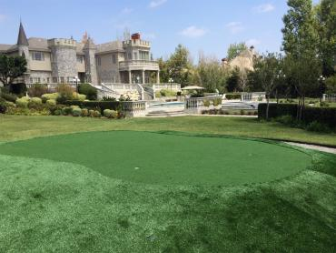 Fake Lawn Cave Creek, Arizona Putting Green Carpet, Front Yard Landscaping Ideas artificial grass