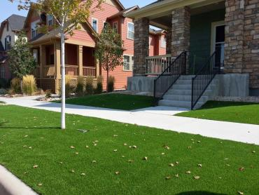 Fake Lawn Citrus Park, Arizona Landscape Rock, Front Yard Design artificial grass