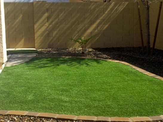 Artificial Grass Photos: Fake Lawn Crozier, Arizona Landscaping, Beautiful Backyards