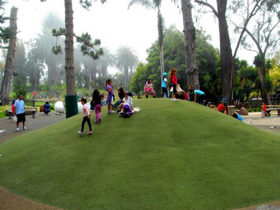 Fake Lawn Tumacacori-Carmen, Arizona Playground Flooring, Recreational Areas artificial grass