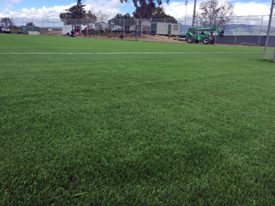 Artificial Grass Photos: Fake Turf Gold Camp, Arizona Eco Friendly Products