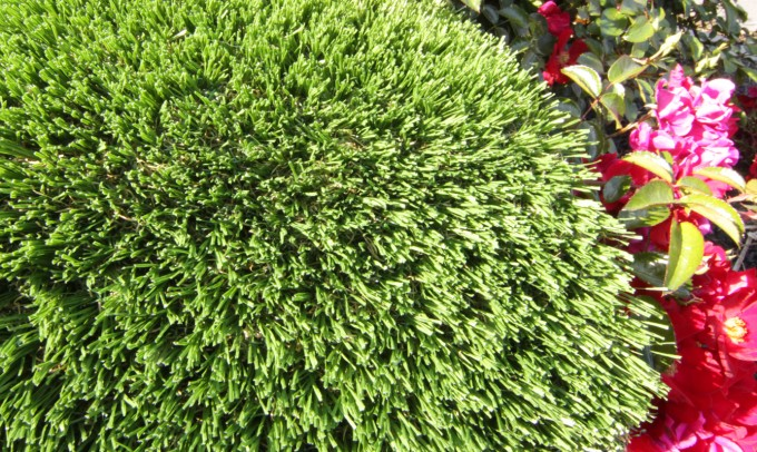 Hollow Blade-73 syntheticgrass