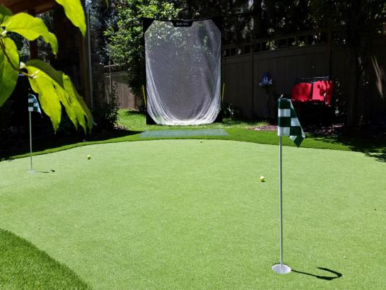 Artificial Grass Photos: Faux Grass Campo Bonito, Arizona Design Ideas, Backyard