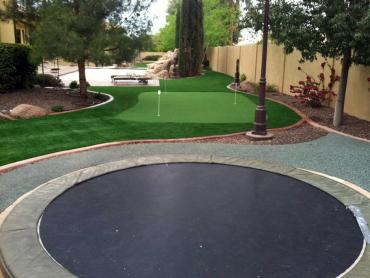 Artificial Grass Photos: Faux Grass McNary, Arizona Lawns, Backyard Ideas
