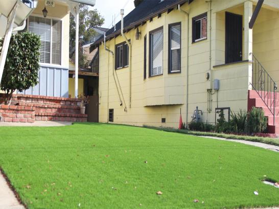 Artificial Grass Photos: Faux Grass San Luis, Arizona City Landscape, Front Yard Ideas