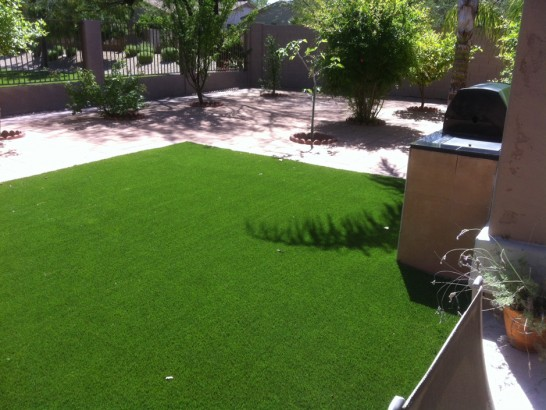 Artificial Grass Photos: Grass Carpet Copper Hill, Arizona Indoor Dog Park, Backyard Landscaping