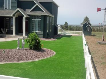 Artificial Grass Photos: Grass Carpet Dilkon, Arizona Landscape Photos, Front Yard Landscaping Ideas