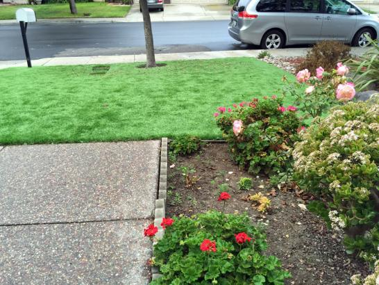 Artificial Grass Photos: Grass Carpet New Kingman-Butler, Arizona Gardeners, Front Yard Landscape Ideas