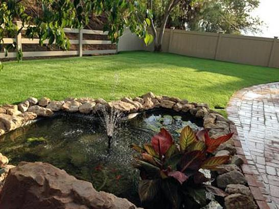 Artificial Grass Photos: Grass Carpet Seba Dalkai, Arizona Landscaping, Swimming Pool Designs