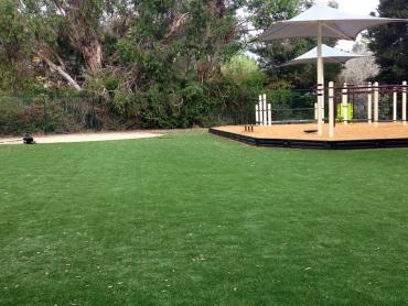 Artificial Grass Photos: Grass Turf First Mesa, Arizona Playground Turf