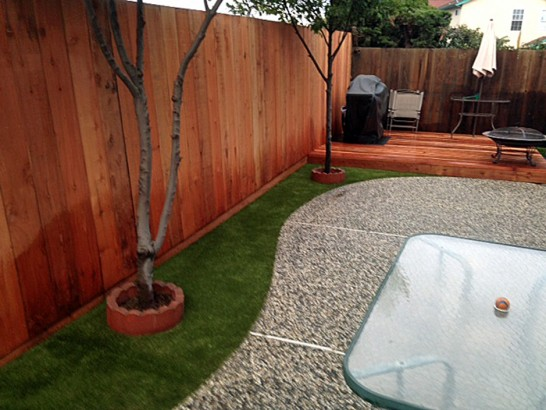 Artificial Grass Photos: Grass Turf Wittmann, Arizona Pet Paradise, Beautiful Backyards
