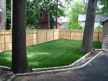 Artificial Grass Photos: Green Lawn Tuba City, Arizona Cat Grass, Backyard Landscaping