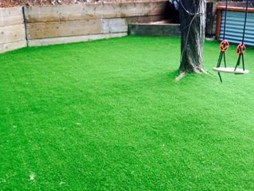 Artificial Grass Photos: How To Install Artificial Grass Greasewood, Arizona Lawn And Garden, Backyard Makeover