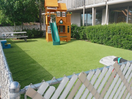 Artificial Grass Photos: Installing Artificial Grass Picacho, Arizona Rooftop, Backyard Landscaping Ideas