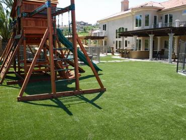 Artificial Grass Photos: Lawn Services Nelson, Arizona Playground, Backyards