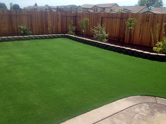 Artificial Grass Photos: Lawn Services Sahuarita, Arizona Rooftop, Backyard Landscaping Ideas