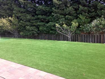 Artificial Grass Photos: Outdoor Carpet Camp Verde, Arizona Landscape Design, Backyard Garden Ideas