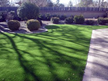 Artificial Grass Photos: Outdoor Carpet Cienega Springs, Arizona Landscape Ideas, Front Yard Landscape Ideas