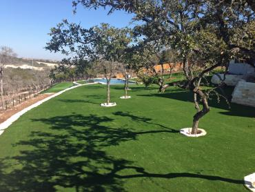 Artificial Grass Photos: Outdoor Carpet Mohave Valley, Arizona Lawn And Garden, Swimming Pools