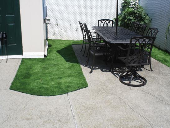 Artificial Grass Photos: Outdoor Carpet Tortolita, Arizona Landscape Design, Backyard Designs