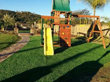 Artificial Grass Photos: Plastic Grass Carefree, Arizona Design Ideas, Backyard Garden Ideas