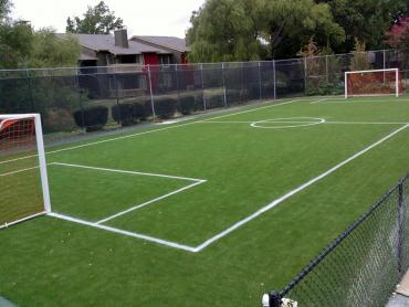 Artificial Grass Photos: Plastic Grass Casas Adobes, Arizona Backyard Sports, Commercial Landscape