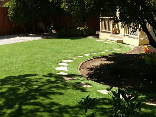 Plastic Grass Comobabi, Arizona Roof Top, Backyard Designs artificial grass