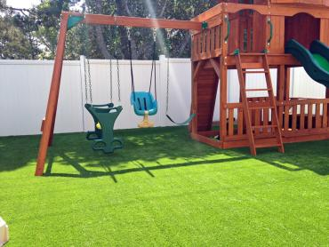 Artificial Grass Photos: Plastic Grass Palominas, Arizona Playground Safety, Backyards