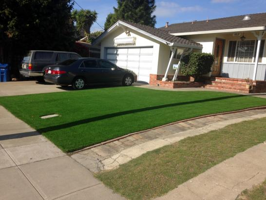 Artificial Grass Photos: Synthetic Grass Cost Catalina, Arizona Landscape Design, Front Yard Landscape Ideas