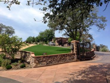 Artificial Grass Photos: Synthetic Grass Cost Dudleyville, Arizona Paver Patio, Front Yard Design