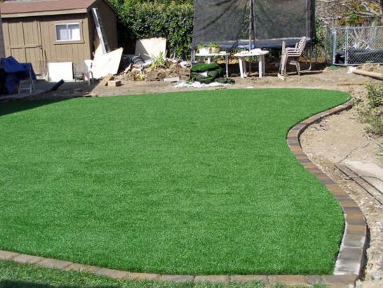 Artificial Grass Photos: Synthetic Grass Cost Grand Canyon Village, Arizona Gardeners, Backyard